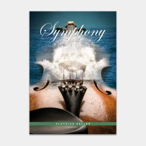 SymphonyOfEverydayThings_1